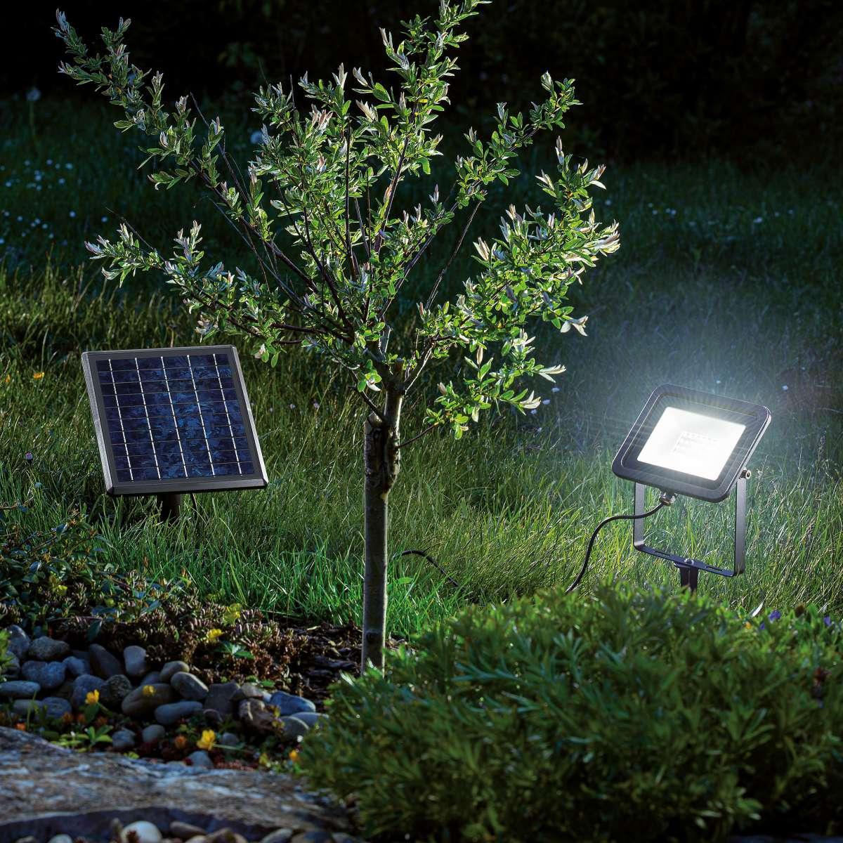 faretto solare 200 lumen ilkluminazione arbusti
