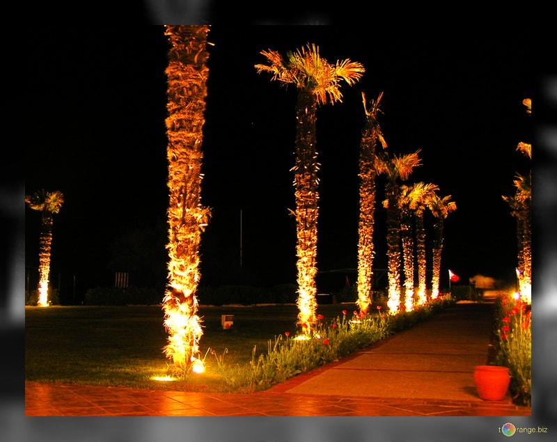 Illuminazione giardino come sceglierla ecoworld shop
