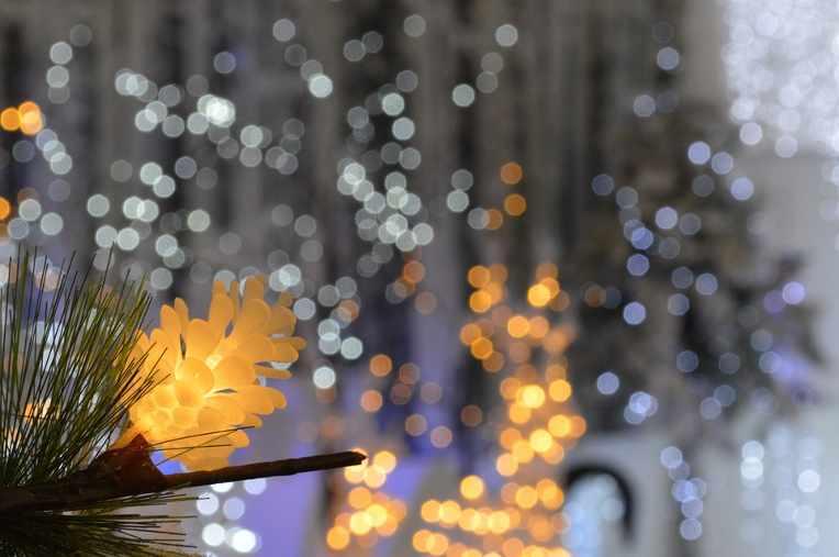 Illuminazione Esterna Natale : Luci di natale ad energia solare come illuminare il giardino