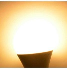Lampadina a Led Luce Bianco Caldo