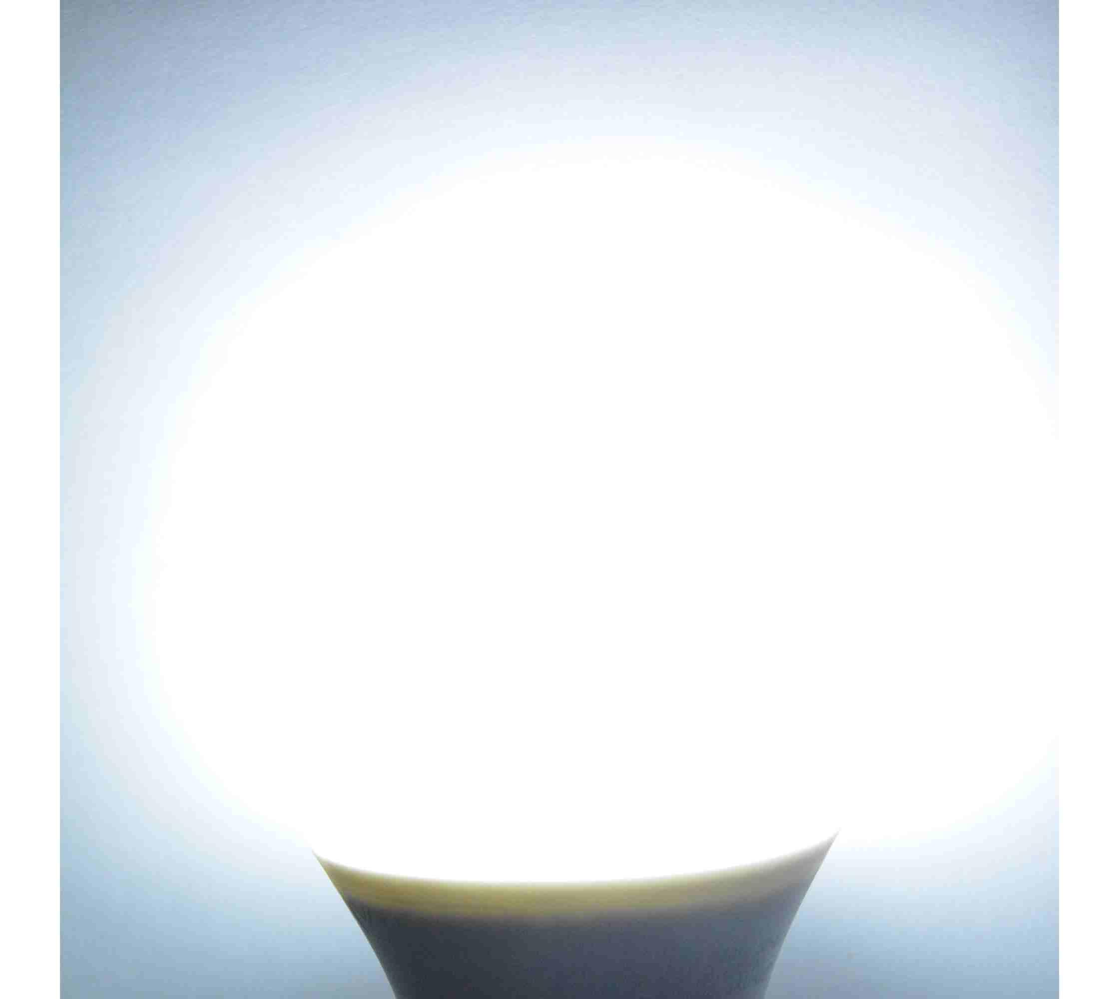 Lampadina a led 9 watt e27 con crepuscolare attacco e27 for Offerte lampadine a led e 27