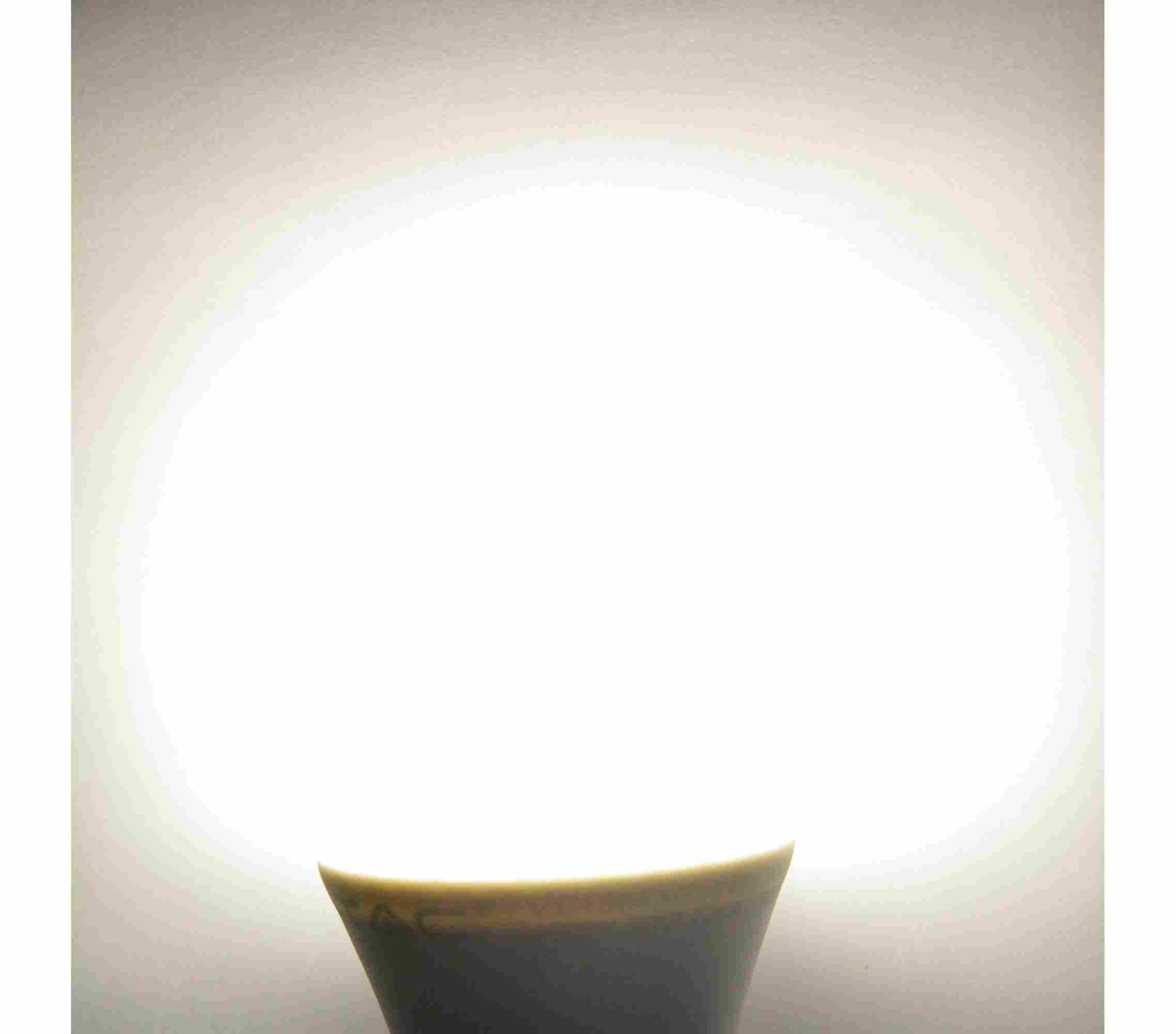 Lampadina a Led 6 Watt attacco E27  Compra online su Ecoworld-Shop.it