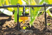 irrigatore-solare