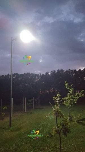 Illuminazione di una porzione di giardino con lampione ad energia solare 3000 lumen
