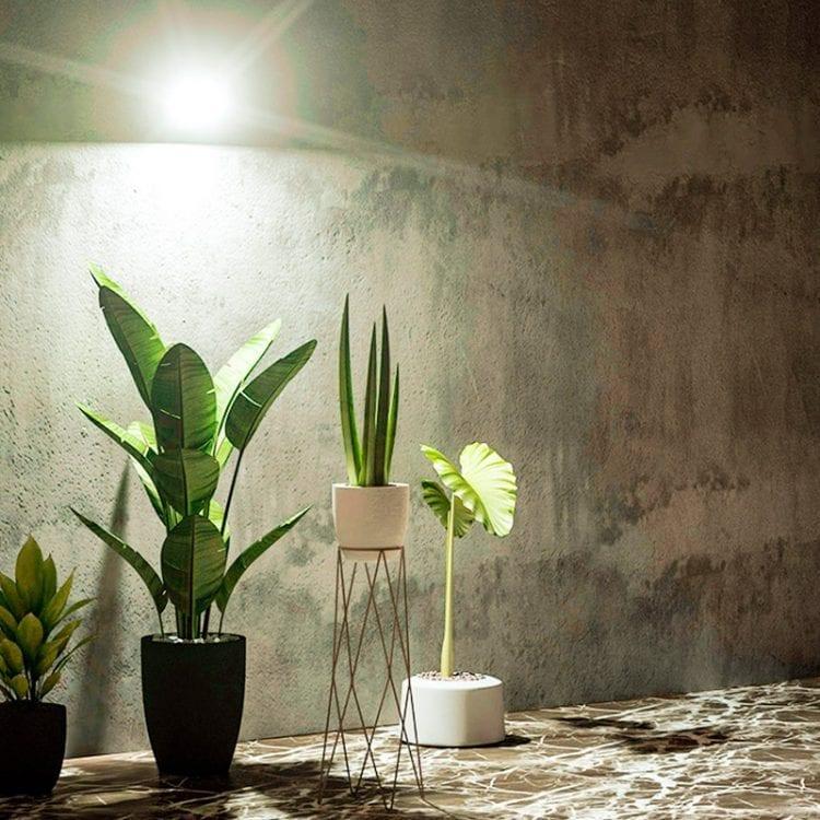 Illuminazione piante con lampada solare da esterno 1000 lumen