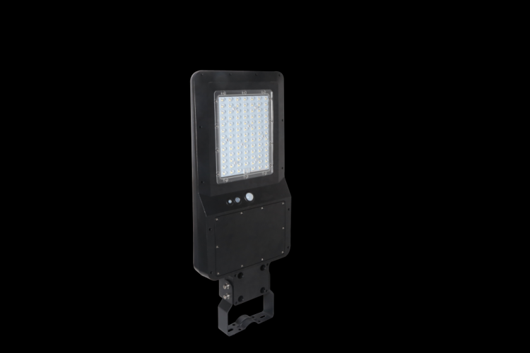 Lampione Solare led con sensore di movimento e telecomando