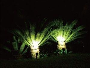 Faretti solari da giardino per illuminazione oggetti e arbusti