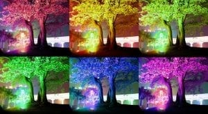 Faro Led RGB ad Energia Solare per esterno